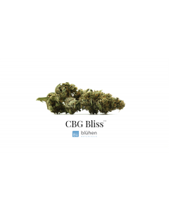 Blühen Botanicals Premium Hemp Flower - CBG Bliss