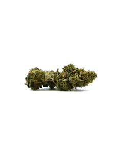 Blühen Botanicals Premium Hemp Flower - Frosted Lime